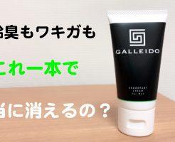 GALLEIDO 口コミ